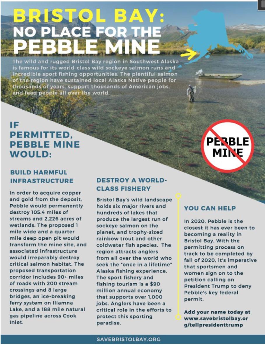 PebbleMineMay2020