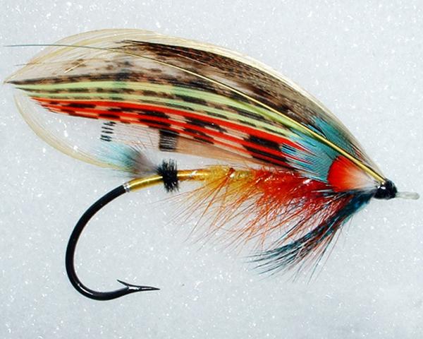 Salmon03